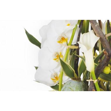 image d'un calla et d'orchidées de la composition