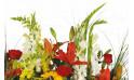 vue sur du glaïeuls blanc de la composition de fleurs pour un deuil