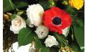 image de renoncules et anémones de la composition florale