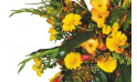 vue sur des glaïeuls jaune et des gerberas jaunes de la couronne Lumière