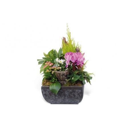 image de la composition de plantes pour un deuil rose & blanche Infini