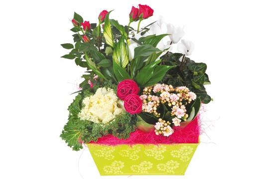 image de la Composition de deuil blanche, rose, fuchsia Souvenir