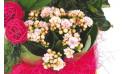 L'Agitateur Floral |vue sur un kalanchoé de la Composition de deuil blanche, rose, fuchsia Souvenir