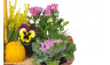 vue sur un ensemble floral de la Composition de deuil jaunes & mauve L'Oasis