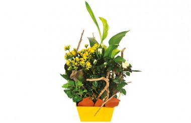 L'Agitateur Floral |L'Agitateur Floral |image de la Composition de deuil jaune & blanche Intensité