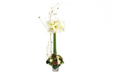 image de la Composition de Noël Flor Ô Vent