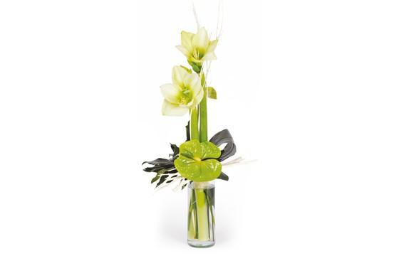 Bouquet d 39 amaryllis un hiver paris des fleurs presque for Commander un bouquet