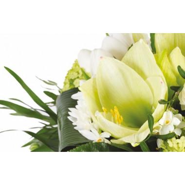 zoom sur un amaryllis blanc du Bouquet de saison Cocon