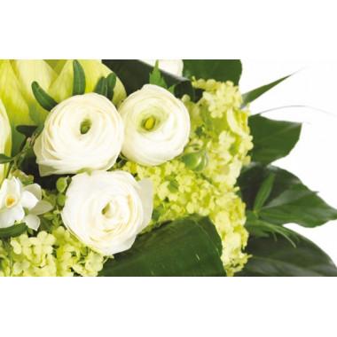 zoom sur de magnifique renoncules du Bouquet de saison Cocon