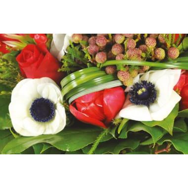 zoom sur des anémones blanches du Bouquet de fleurs rouges Evidence