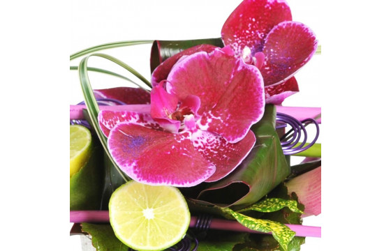 L'Agitateur Floral | Zoom sur le fleuron d'orchidée de la composition florale