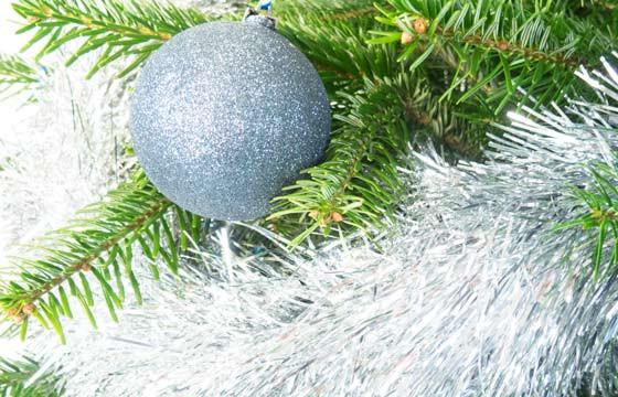 L'Agitateur Floral  Zoom sur la décoration du sapin de Noël