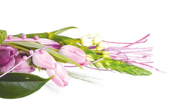 bouquet de tulipes hortensias envol livraison de. Black Bedroom Furniture Sets. Home Design Ideas
