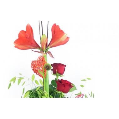 zoom sur les fleurs du Bouquet de fleurs Linéaire Isoline