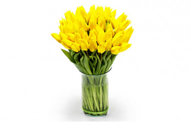 Image du Bouquet de Tulipes Jaunes