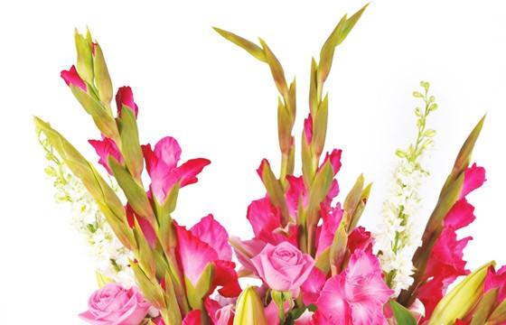 L'Agitateur Floral |zoom sur les glaieul rose du Bouquet de fleurs rose Eclatant