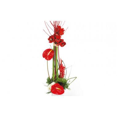 L'Agitateur Floral |Zoom image composition de fleurs Arum
