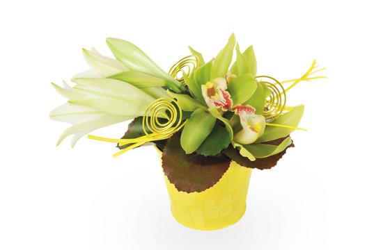 Belle composition florale verte et jaune.