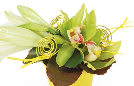 Composition de fleurs Gaité zoom