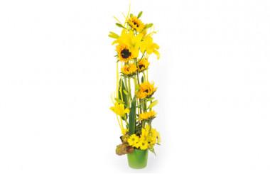 Image couverture composition florale Equilibre