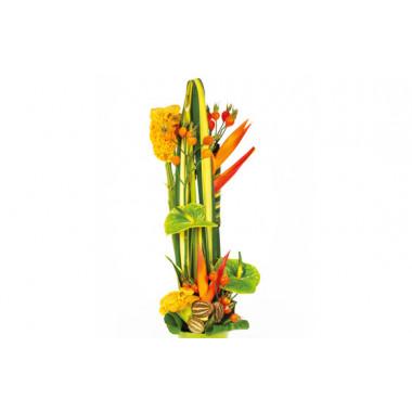 Image zoom composition de fleurs colorées Cesaria