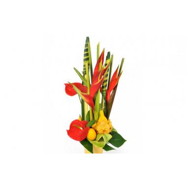 L'Agitateur Floral |Image zoom composition exotique Voyage