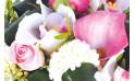 zoom sur des fleurs du bouquet