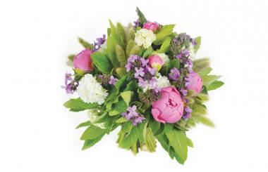 Image de couverture bouquet de pivoines roses Monaco