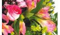 L'Agitateur Floral | zoom sur les roses et les astroemerias du bouquet de fleurs