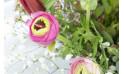 """zoom bouquet de renoncules """"Pimprenelle"""""""