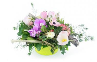 Image de couverture composition Fleurs des Bois