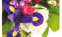 L'Agitateur Floral | zoom sur un ensemble de fleurs du bouquet floral