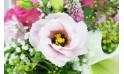 L'Agitateur Floral | macro sur un lisianthus du Bouquet rond de fleurs Lily Rose