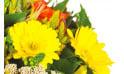 L'Agitateur Floral |zoom sur les gerberas jaunes du bouquet