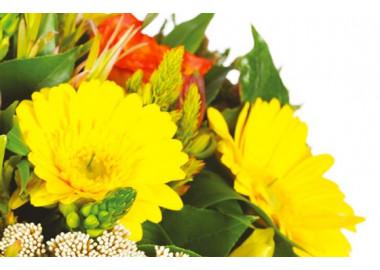 zoom sur les gerberas jaunes du bouquet