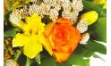 zoom sur une rose orange et autre fleurs jaunes