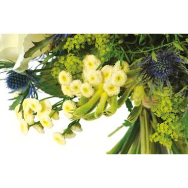 zoom sur des fleurette du bouquet Alchimie