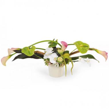 L'Agitateur Floral |Image de la composition horizontale dans les tons pastel blanc et vert