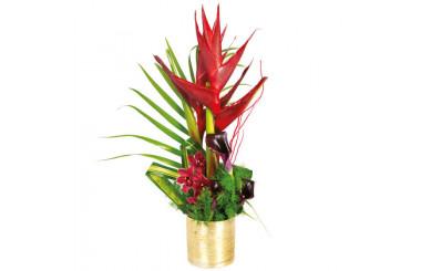 L'Agitateur Floral |image de la composition de fleurs exotiques Tango