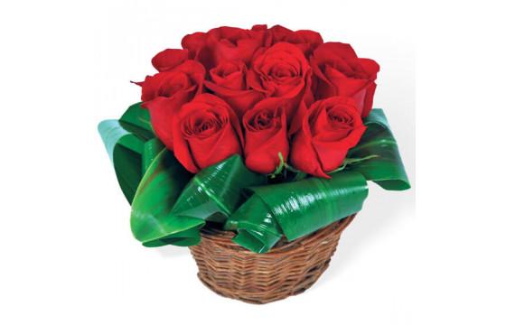 Bouquet de roses rouges Brazilia