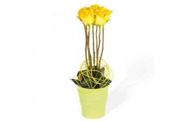 L'Agitateur Floral | image de la composition de roses jaune Lily