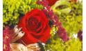 image d'une rose rouge du bouquet Révélation