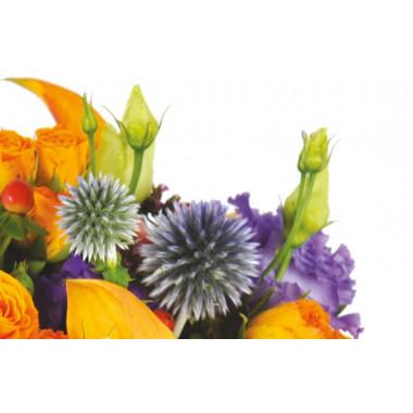 zoom sur des chardons du bouquet de fleurs