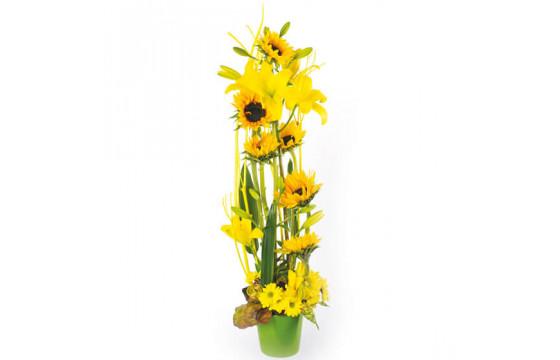 L'Agitateur Floral | Image couverture composition florale Equilibre