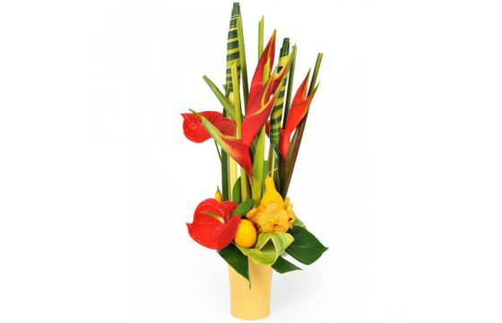 L'Agitateur Floral |Image de couverture composition exotique Voyage