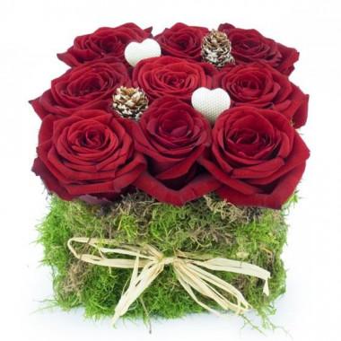 L'Agitateur Floral |image du carré de Noël