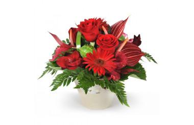 L'Agitateur Floral | image de la composition de fleurs rouges flamboyant