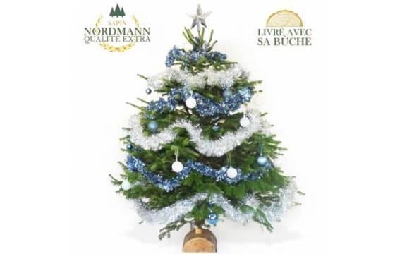 Sapin De Noël Décoré Bleu Et Argent