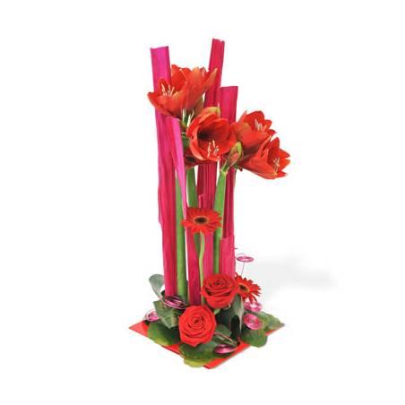 L'Agitateur Floral |image de la Composition florale Tonique