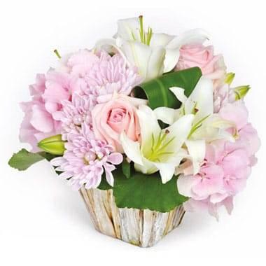 L'Agitateur Floral | image de la composition de fleurs Velour rose